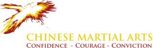 Iron Phoenix Martial Arts, LLC